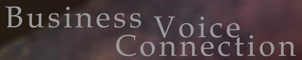 Business Voice Connection