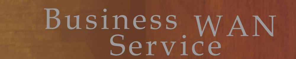 Business WAN Service
