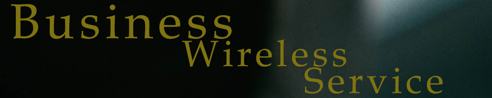 Business Wireless Service