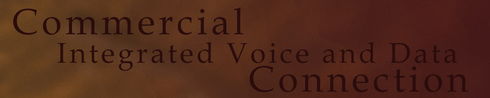 Commercial Integrated Voice and Data Connection