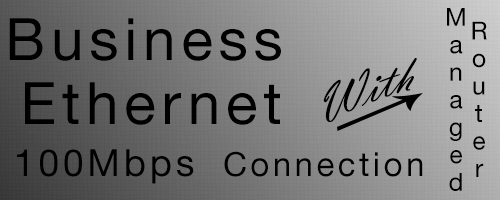 100Mb Business Ethernet Connection Router