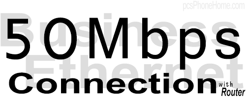 50M Business Ethernet Connection with Router