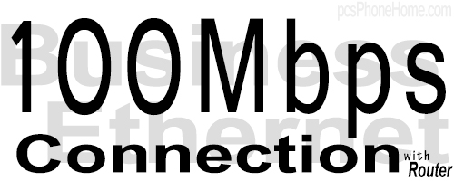 100M Business Ethernet Connection with Router