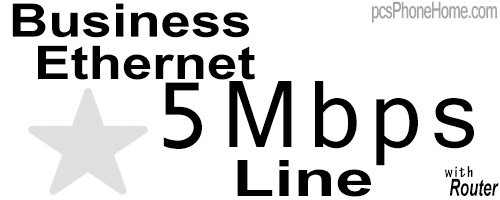 5Mb Business Ethernet Line with Router